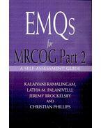 EMQs for MRCOG Part 2 – A Self-Assessment Guide - RAMALINGAM – PALANIVELU – BROCKESLBY – PHILLIPS