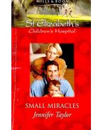 Small Miracles - Taylor,Jennifer