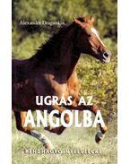 Ugrás az angolba (rendhagyó nyelvlecke) - DRAGUNKIN, ALEXANDER