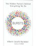 Bursts - The Hidden Pattern Behind Everything We Do - Barabási Albert László