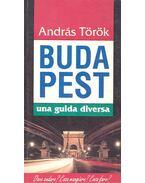 Budapest, Una guida diversa - Török András