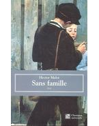 Sans famille - 2. partie - Malot Hector