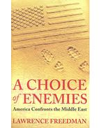 A Choice of Enemies - America Confronts the Middle East - FREEDMAN, LAWRENCE