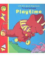 Triceratops Playtime - TROTTER, STUART - LONERGAN, ELAINE