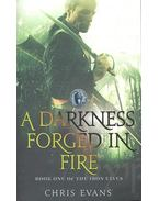 A Darkness Forged in Fire - EVANS, CHRIS