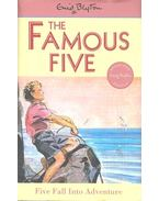 Five Fall Into Adventure - Blyton, Enid