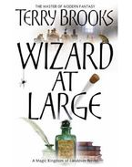 Wizard at Large - Brooks, Terry