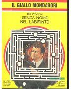 Senza Nome nel Labirinto - Pronzini, Bill