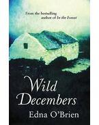 Wild Decembers - Edna O'Brien