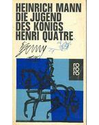 Die Jugend des Königs Henri Quarte - Mann, Heinrich
