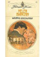 Wildfire Encounter - Bianchin, Helen