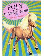 Poly et le diamant noir - Aubry, Cécile