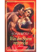 Was der Sturm verspricht - Wolf, Joan