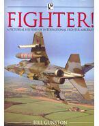 Fighter! - Gunston, Bill