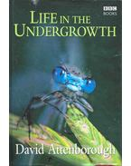 Life in the Undergrowth - Attenborough, David
