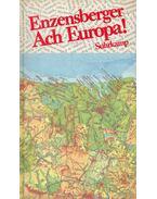 Enzensberger Ach Europa! - Enzensberger, Hans Magnus