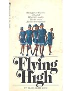Flying High - RICH, ELIZABETH