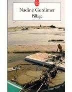 Pillage - Nadine Gordimer