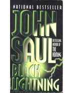 Black Lightning - Saul, John