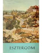 Esztergom - Huba László