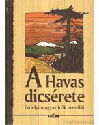 A Havas dicsérete - Hunyadi Csaba