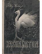Kisbalaton - ifj. Tildy Zoltán