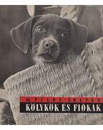 Kölykök és fiókák - ifj. Tildy Zoltán
