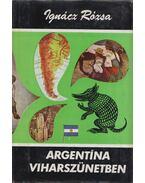 Argentína viharszünetben - Ignácz Rózsa