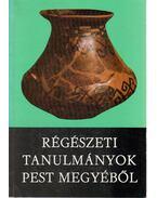 Studia Comitatensia 17. - Régészeti tanulmányok Pest megyéből - Ikvai Nándor