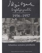 Naplójegyzetek 1956-1957 - Illyés Gyula