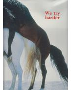 We Try Harder - Ingebright Steen Jense
