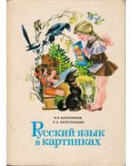 Orosz nyelv képekben 1. (orosz) - Innokentij Vasziljevics Barannikov, Ljudmilla Alekszandrovicsa Varkovickaja