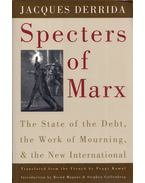 Specters of Marx: The State of the Debt, the Work of Mourning and the New International - Jacques Derrida
