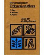 Exkursionsflora für die Gebiete der DDR und der BRD - Jager, Eckehart, Schubert, Rudolf, Werner, Klaus, Rothmaler, Werner
