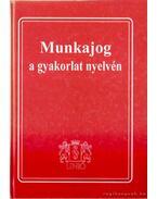 Munkajog a gyakorlat nyelvén - Jakab András dr.
