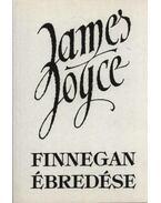 Finnegan ébredése - James Joyce