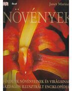 Növények - Janet Marinelli