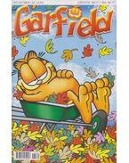 Garfield 2017/október 331. szám - Jim Davis