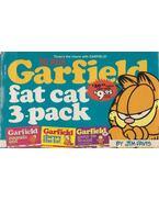 Garfield Fat Cat Three Pack Volume VI - Jim Davis