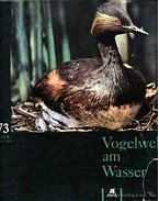Vogelwelt am Wasser (Vízi madárvilág) - Jirásek, Jan, Sigmund, Egon