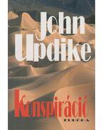 Konspiráció - John Updike