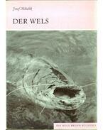 Der Wels - Jozef Mihálik
