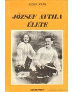 József Attila élete - József Jolán