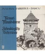 Turnuri Transilvanene - Juliana Fabritius-Dancu