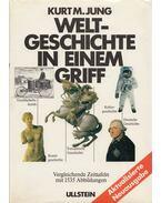 Weltgeschichte in einem Griff - Jung, Kurt M.
