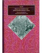 Állatorvosi kórbonctani elektronmikroszkópos atlasz (dedikált) - Dr. Kapp Pál