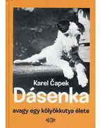 Dásenka, avagy egy kölyökkutya élete - Karel Capek