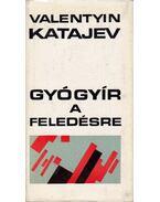 Gyógyír a feledésre - Katajev, Valentyin