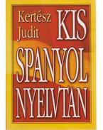 Kis spanyol nyelvtan - Kertész Judit