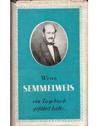 Wenn Semmelweis ein Tagebuch geführt hatte... - Kertész Róbert